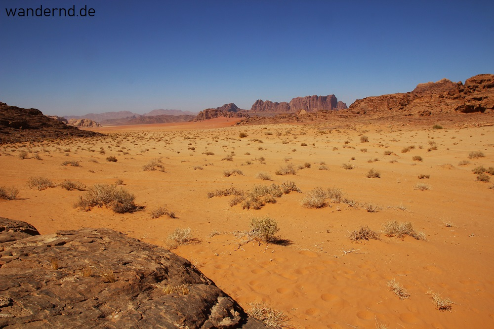 Fünf Nächte im Wadi Rum: Sinfonie in rot und braun