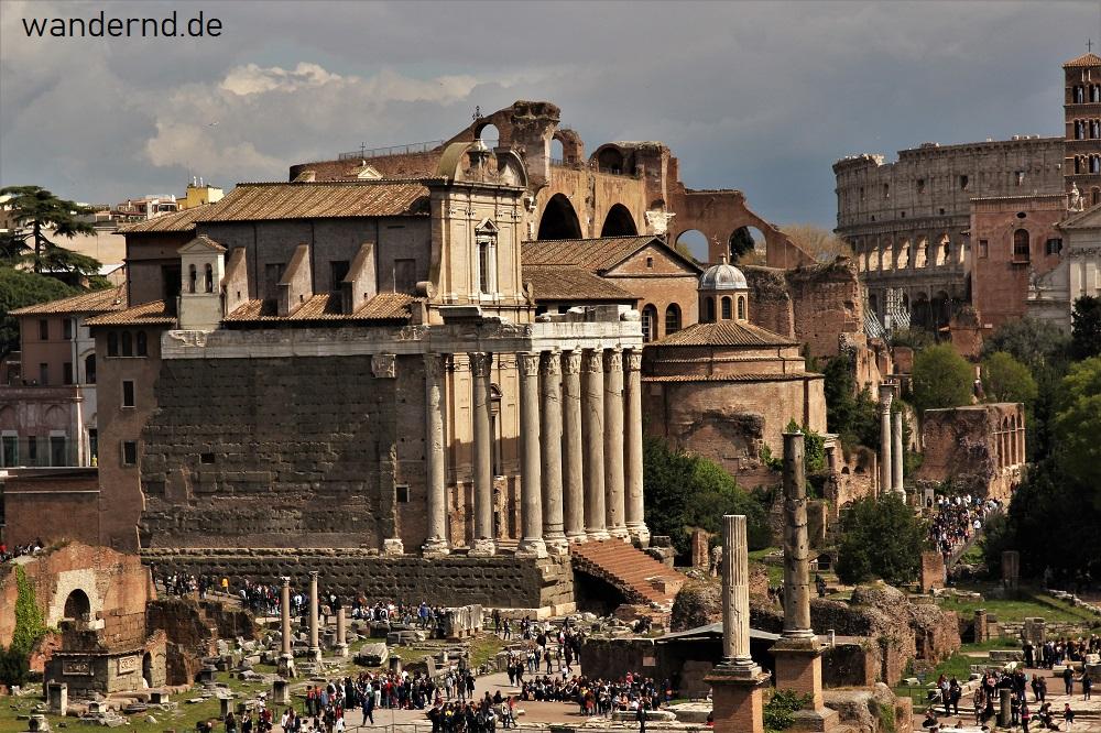 Der römische Tempel des Antoninus und der Faustina auf dem Forum Romanum