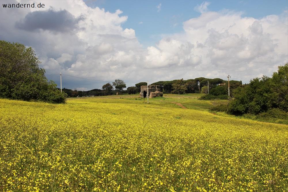Rom Tipps: Radfahren rund um die Via Appia Antica und im Valle della Caffarella