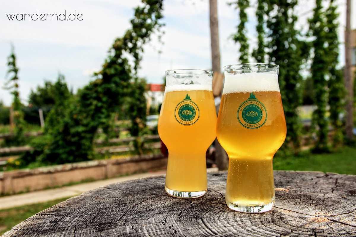 """Eine erfrischende Überraschung an einem heißen Sommertag im Hopfengarten in Bamberg: """"Koala"""" - das Bier mit Eukalyptus"""