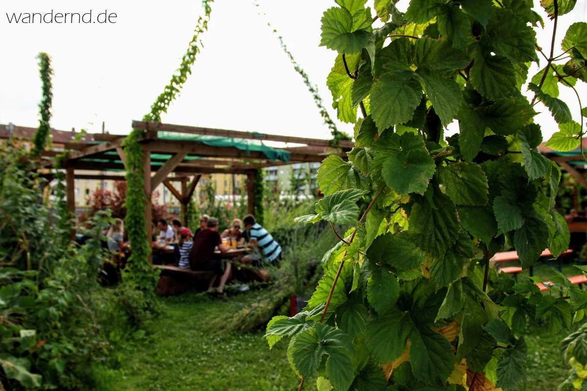 Gemütlich gehts zu beim Sommerbier- und Gin-Fest im Hopfengarten