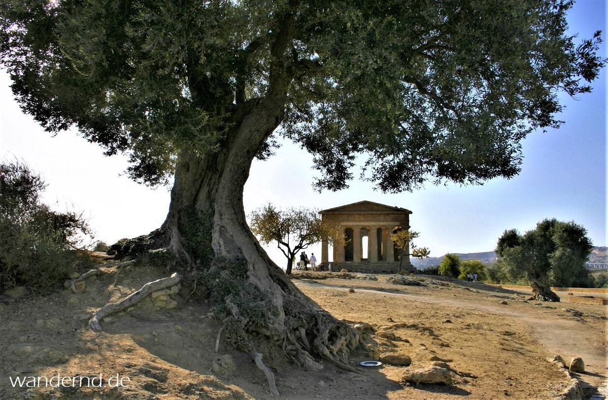 Im Valle dei Templi bei Agrigento, Sizilien