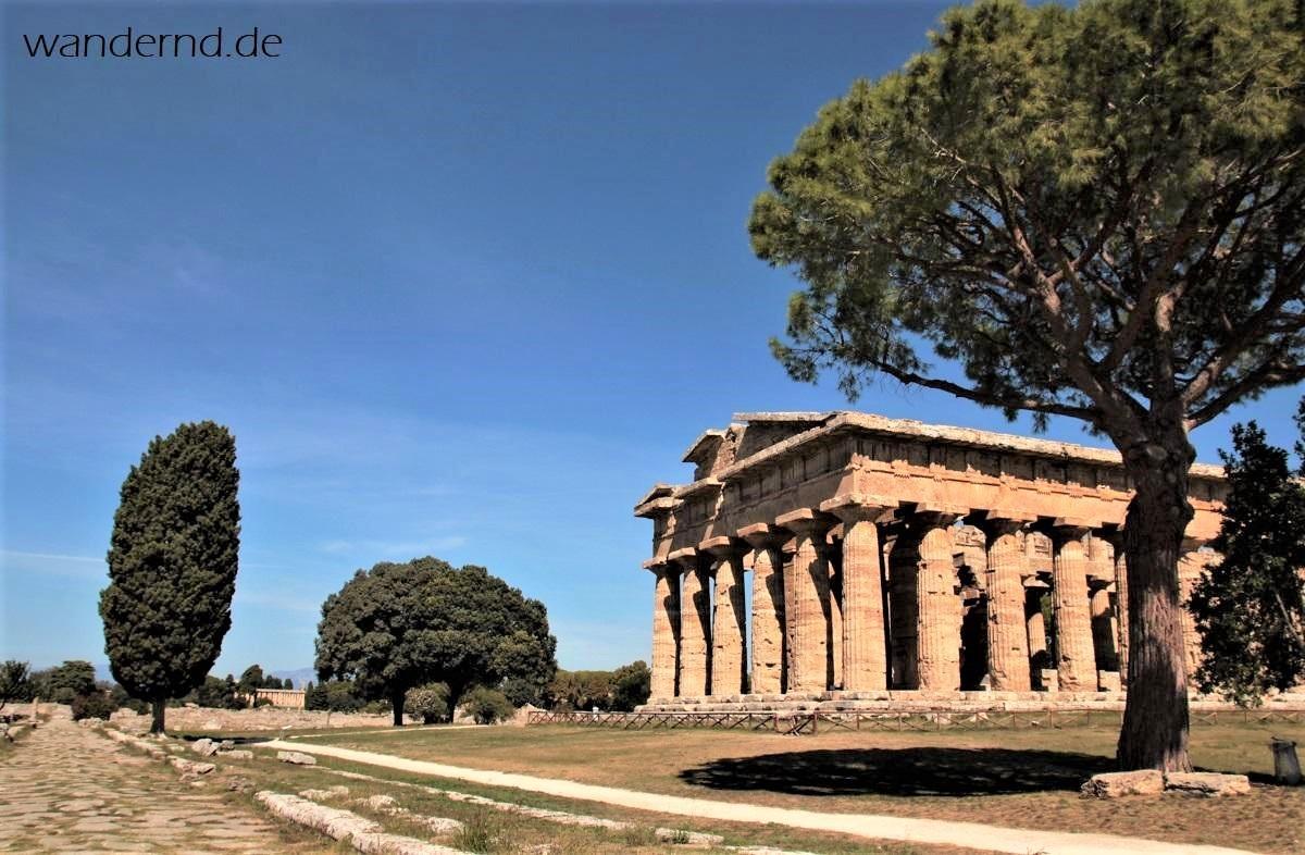 Blick auf den Poseidontempel von Paestum von der Via Sacra