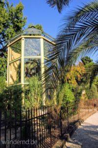 Padua Sehenswürdigkeiten: Goethes Palme im Botanischen Garten