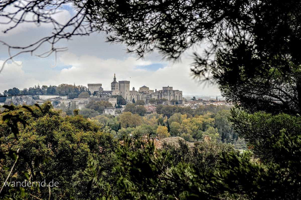 Anblick von Avignon von Villeneuve-les-Avignon aus