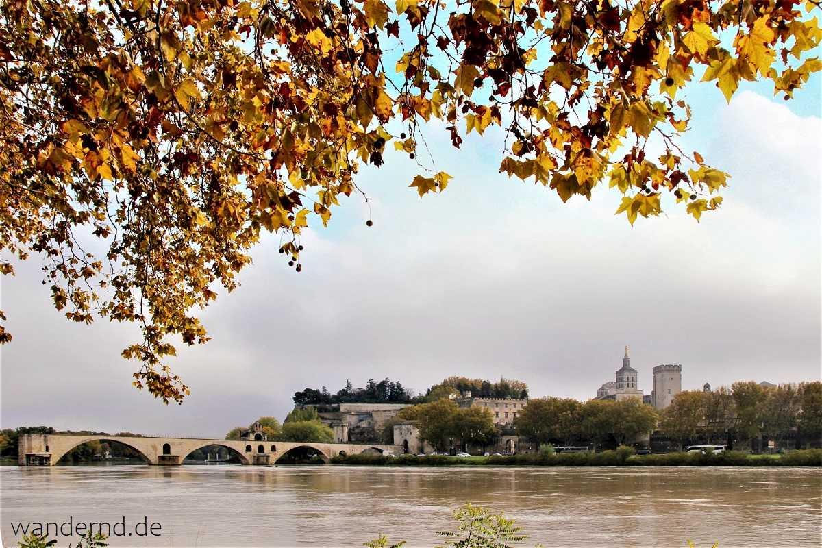 Blick auf den Pont Bénézet