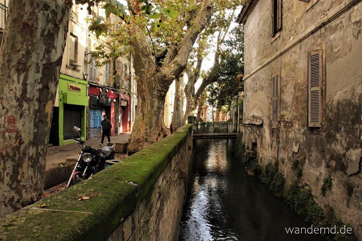 Avignon Sehenswürdigkeiten: Die Rue des Teinturiers